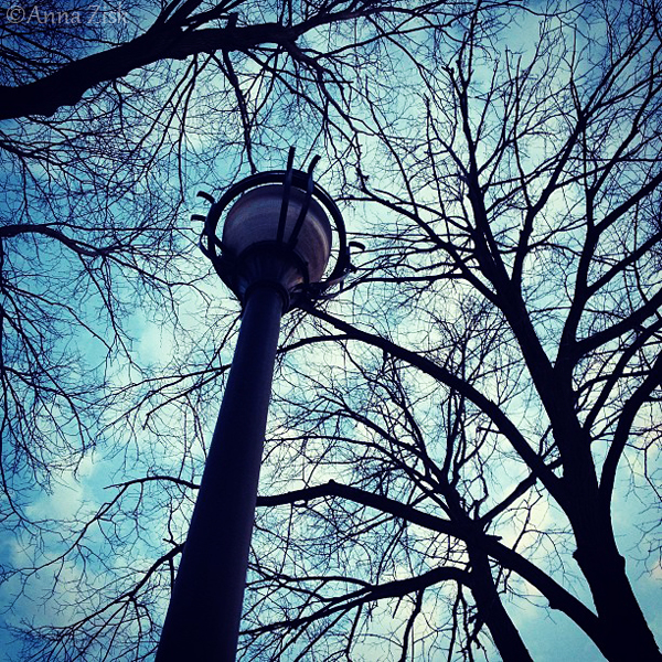 street_lamp_97_365_annasangle
